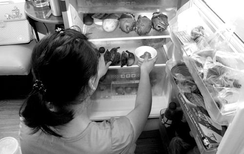 hỏng tủ lạnh vì hay mở ra đóng vào