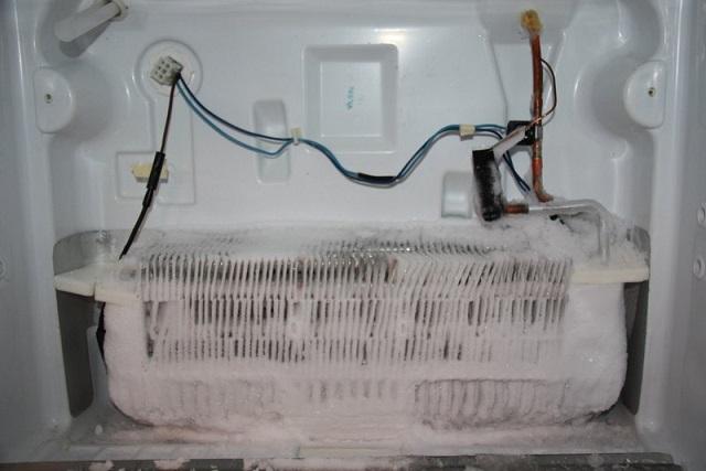 tủ lạnh bị đóng tuyết